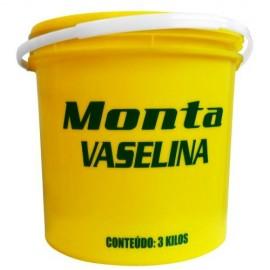 PASTA VASELINA P/MONT PNEU ( GALÃO 3 Kg ) MONTA